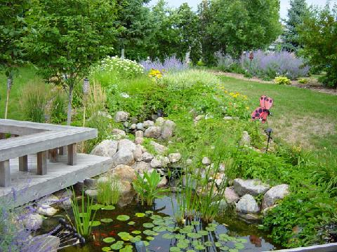 Pond with cedar deck overhanging, waterfall, plant materials.